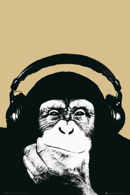 Steez Monkey MAXI POSTER FRAMED *NEW*