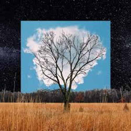 Fink - Bloom Innocent - LP *NEW*