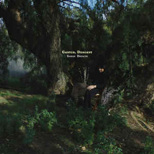 Sarah Davachi ‎– Cantus, Descant - 2LP *NEW*
