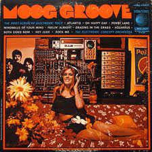 Electronic Concept Orchestra ‎– Moog Groove - LP *USED*