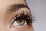 DC Eyelash & Eyebrow Astringent