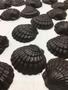 Large shelles