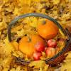 Fall in Love Fragrance Oil