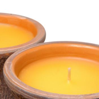 Citronella Fragrance Oil