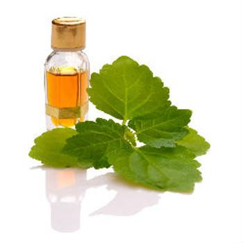 Patchouli Fragrance Oil