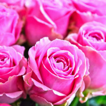 Fresh Cut Rose Fragrance Oil - Bulk
