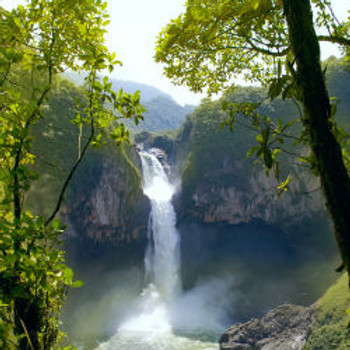 Amazon Falls Fragrance Oil - Bulk