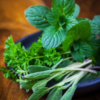 Sage & Mint Fragrance Oil - Bulk