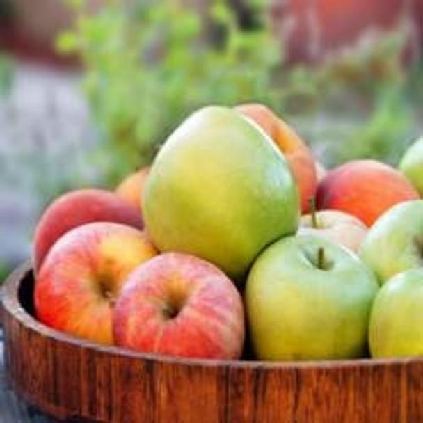 Mahogany Apple - Type* Fragrance Oil