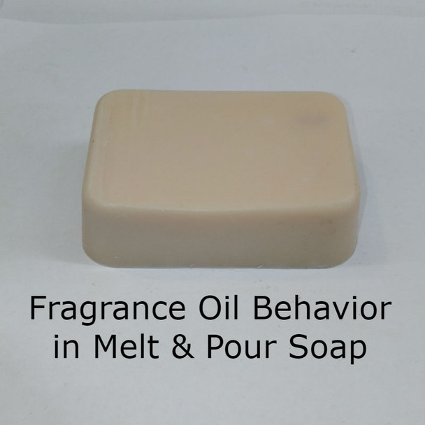 Tabac & Leather - Type* Fragrance Oil