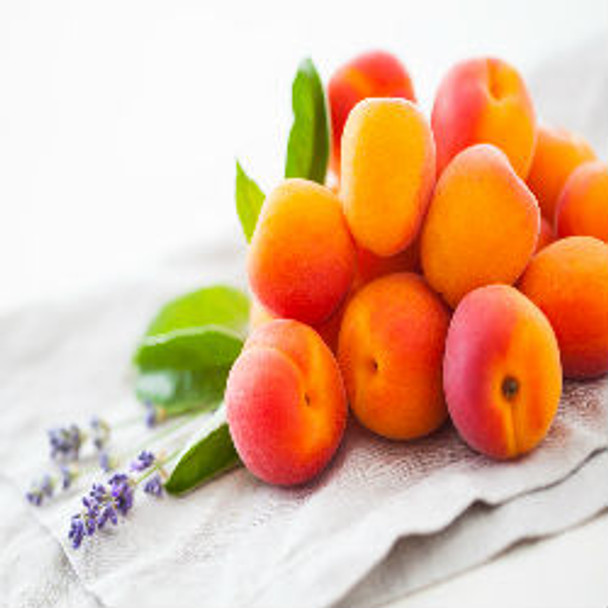 Lavender & Spring Apricot - Type* Fragrance Oil