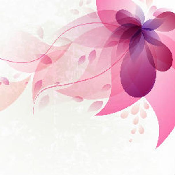 Pink Chiffon - Type* Fragrance Oil