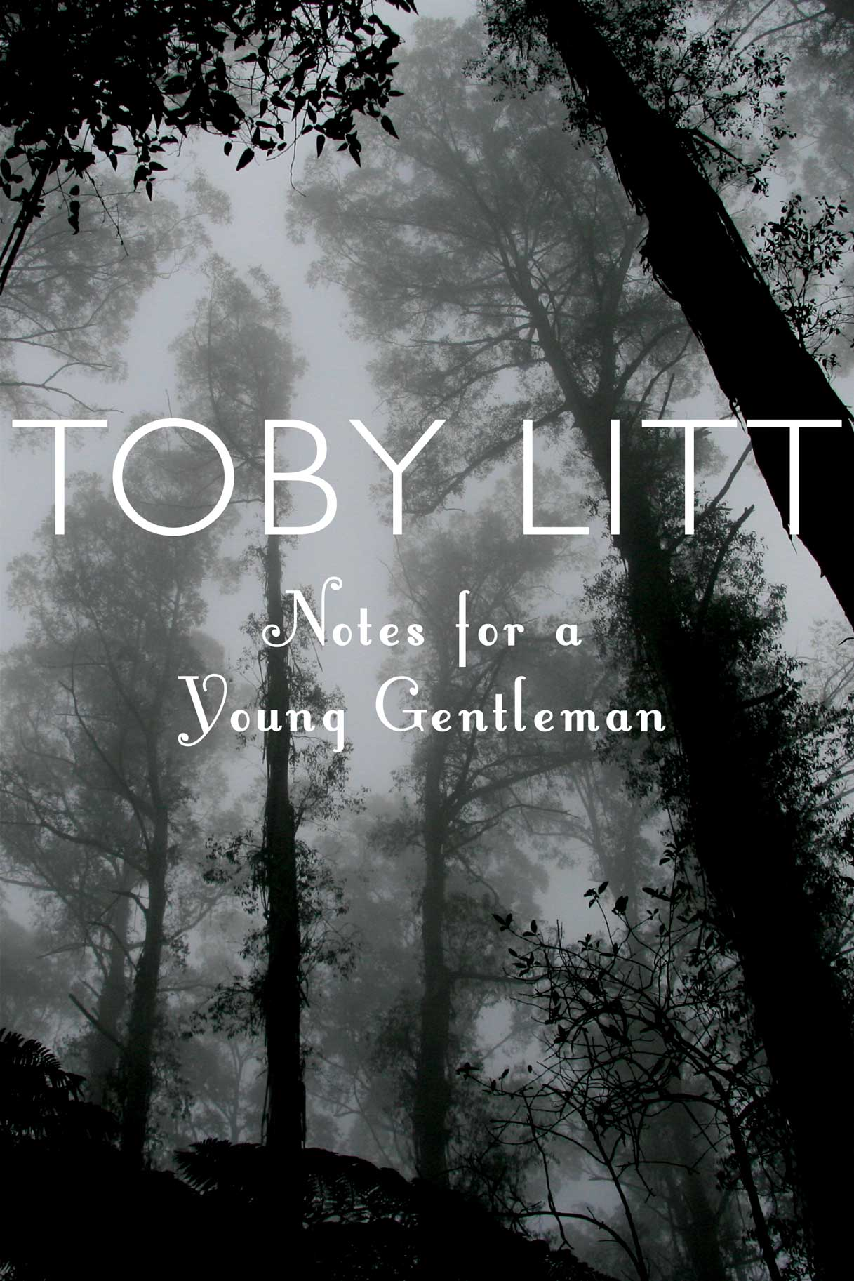 Notes for a Young Gentleman by Toby Litt | Seagull Books
