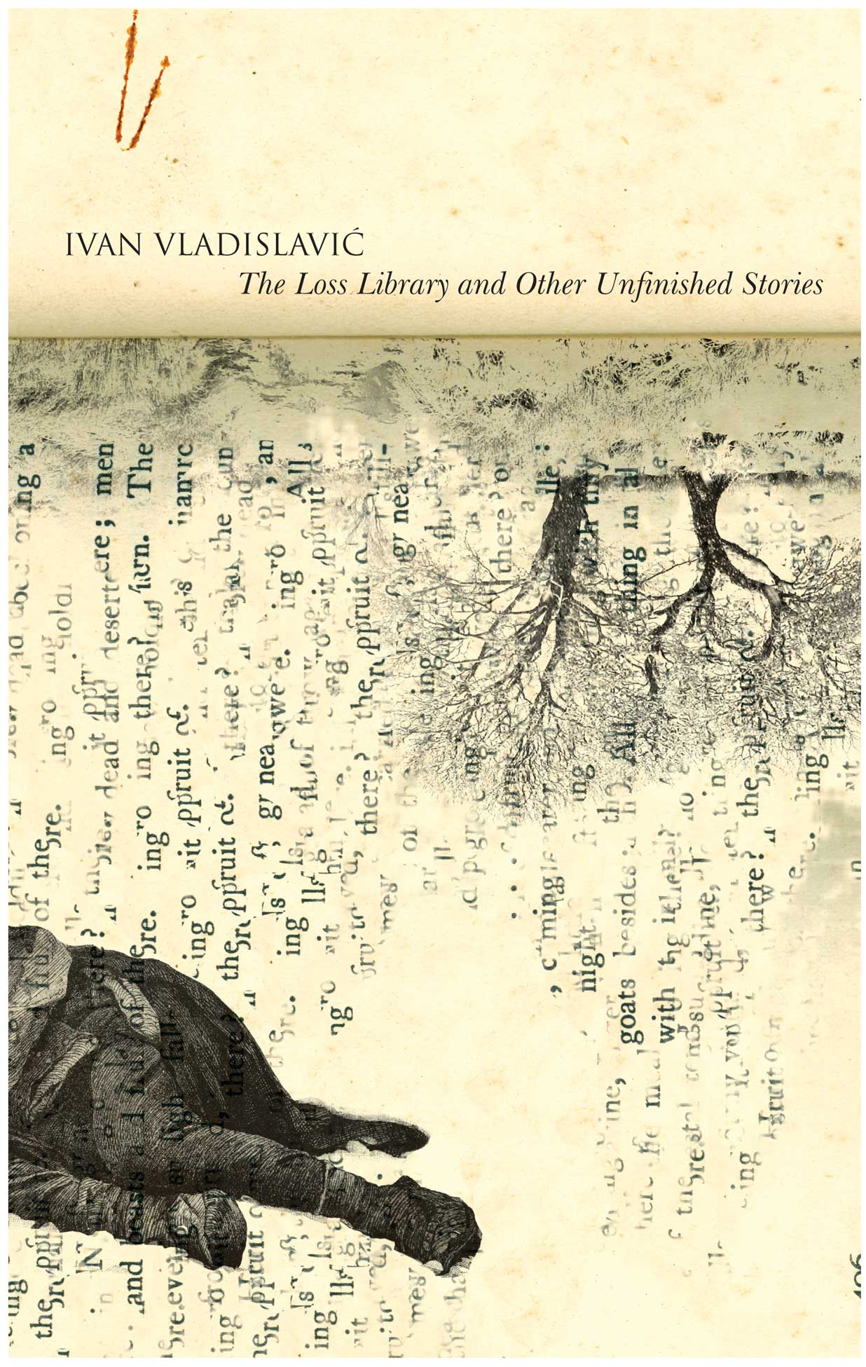 The Loss Library and Other Unfinished Stories by Ivan Vladislavić | Seagull Books