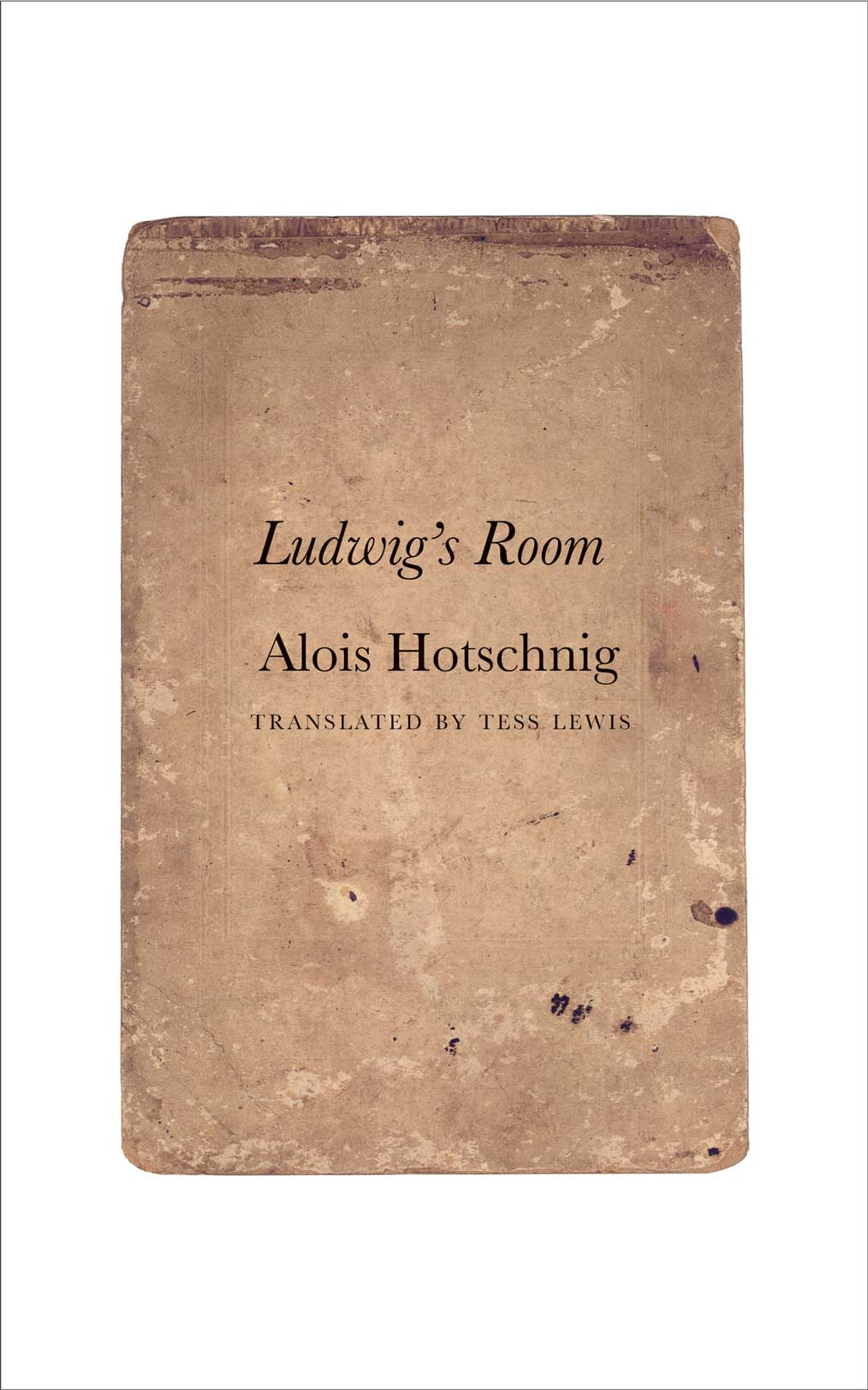 Ludwig's Room by Alois Hotschnig | Seagull Books