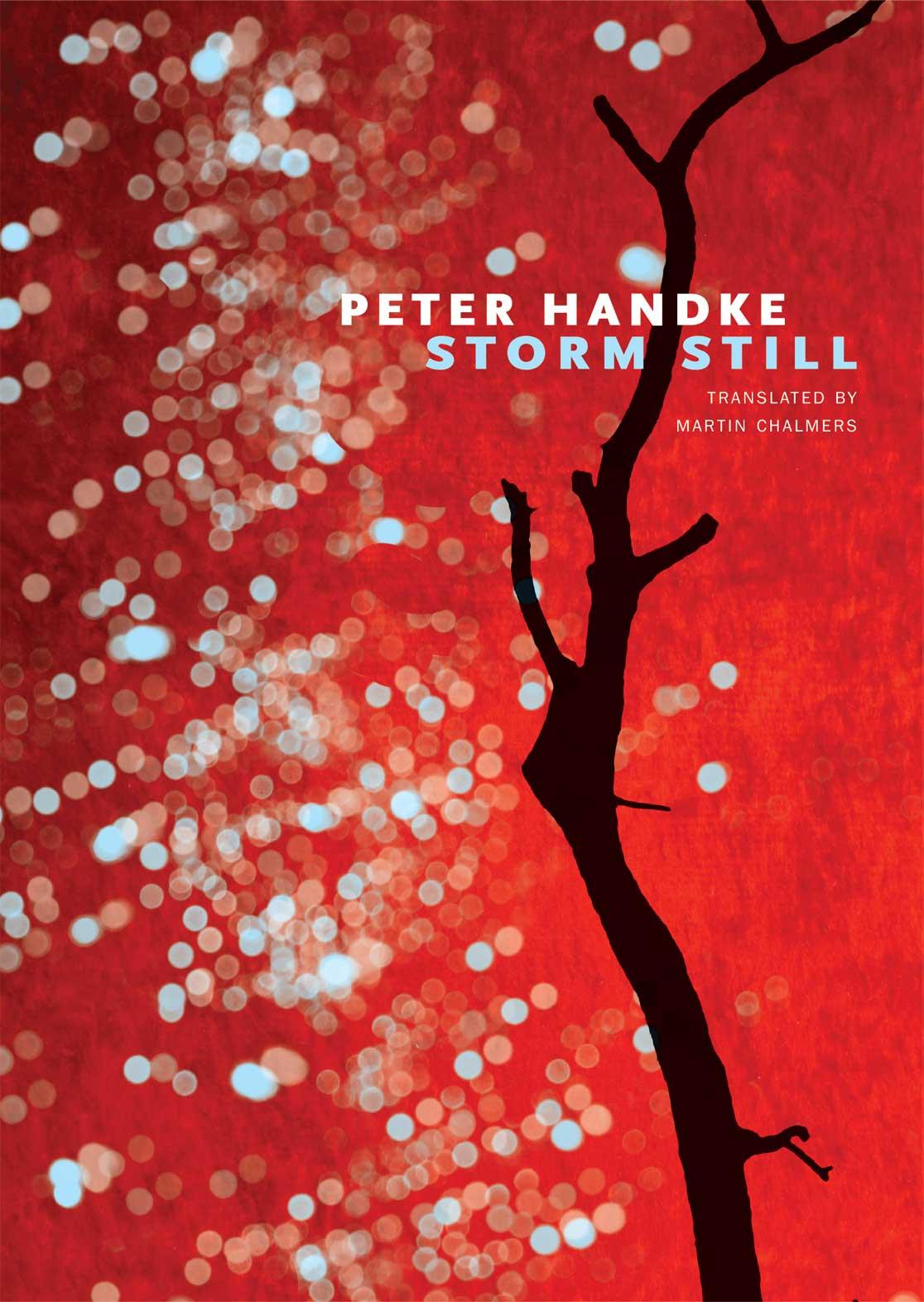 Storm Still by Peter Handke  |  Seagull Books