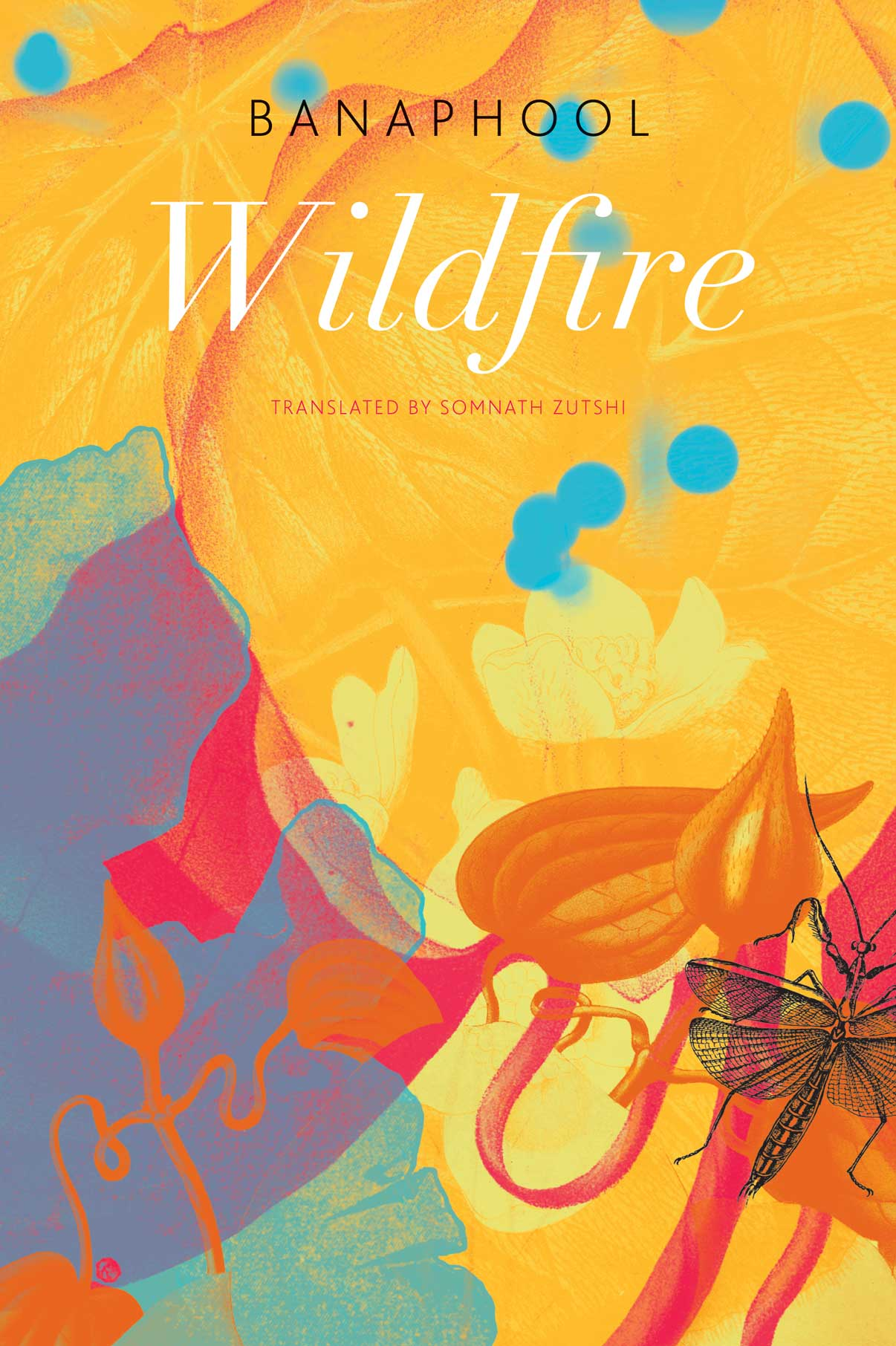 Wildfire and Other Stories by Banaphool  |  Seagull Books