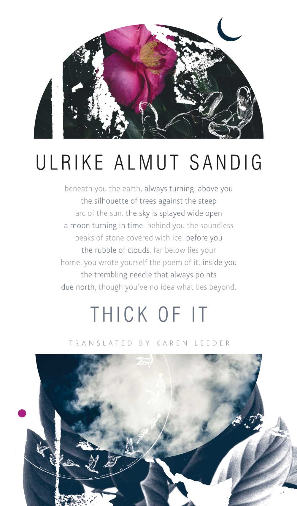 Thick of It by Ulrike Almut Sandig | Seagull Books