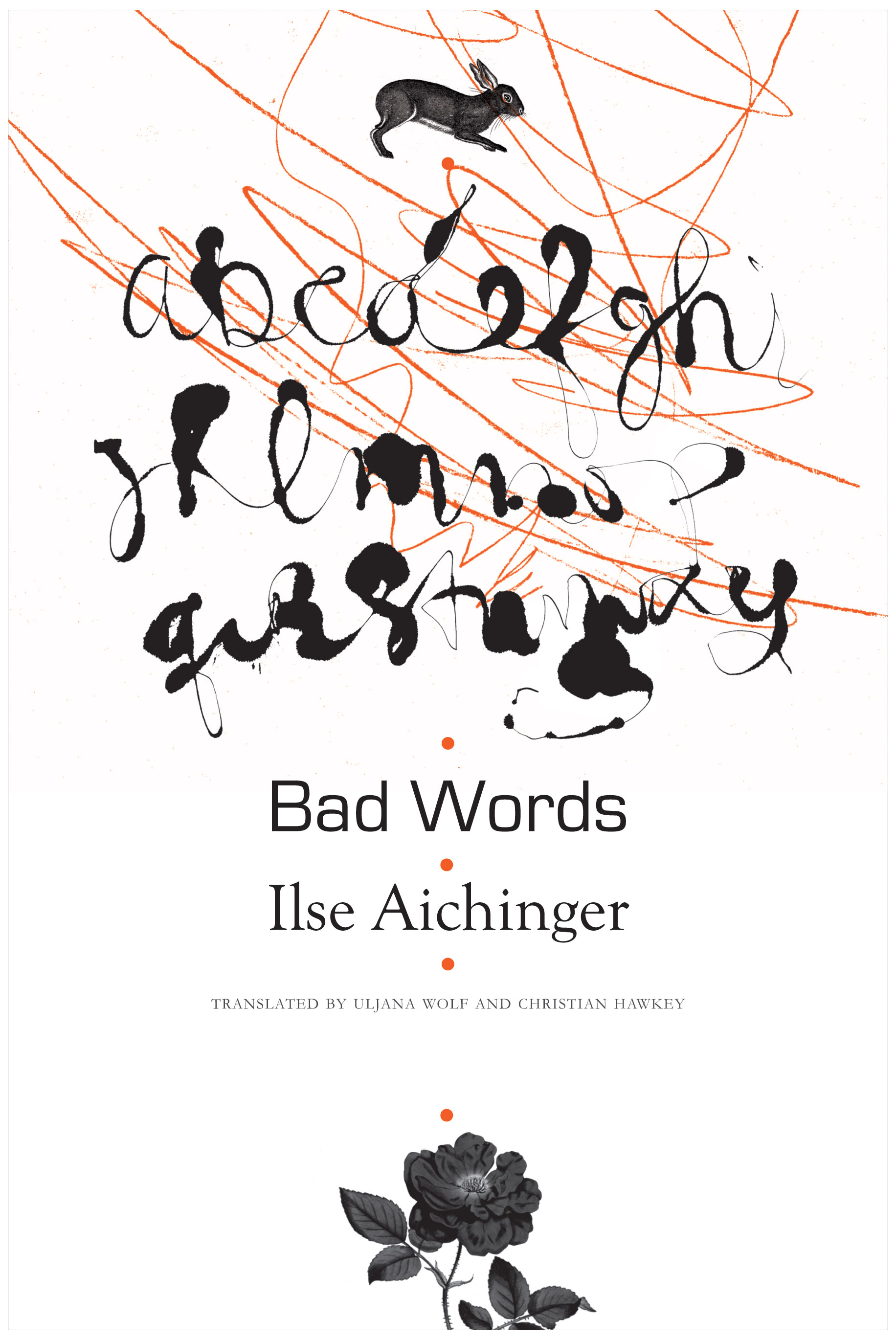 Bad Words by Ilse Aichinger | Seagull Books