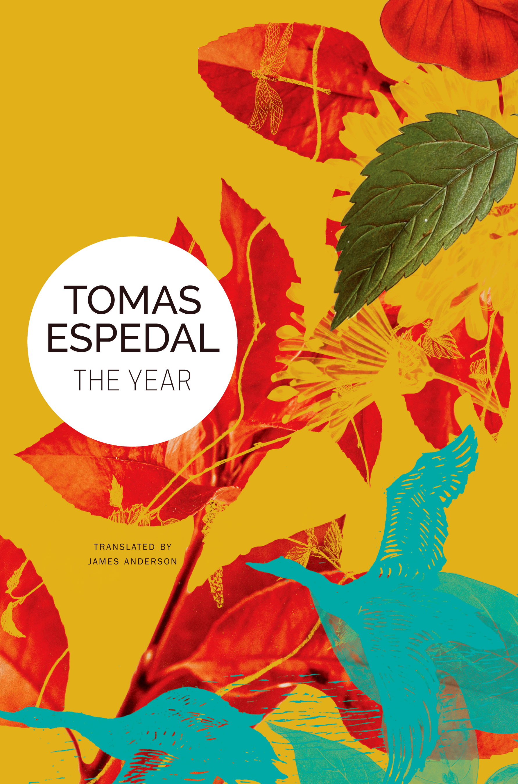 The Year by Tomas Espedal | Seagull Books