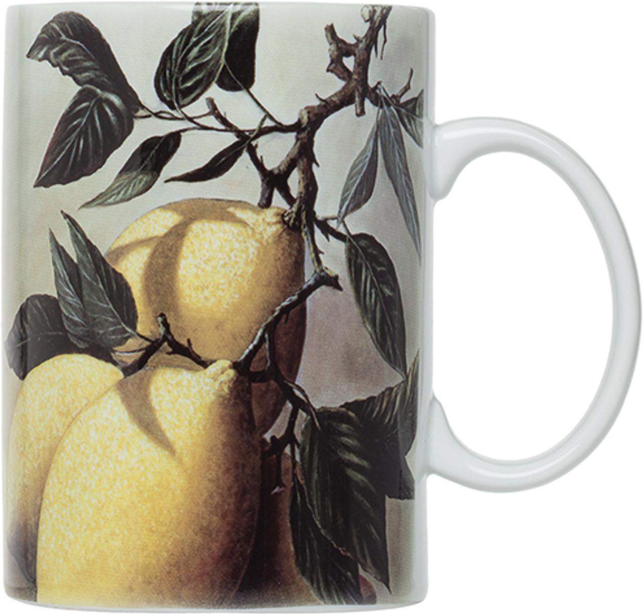 HIC Limoni Mugs,  Set of 4