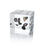 Lucite Cube with Floating Geodes