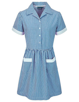 Blue Stripe Summer Dress