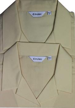 St Philomenas Short Sleeve Twin Pack Blouses Tussore (Trutex)