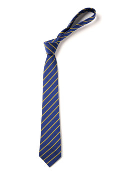 Devonshire School Tie