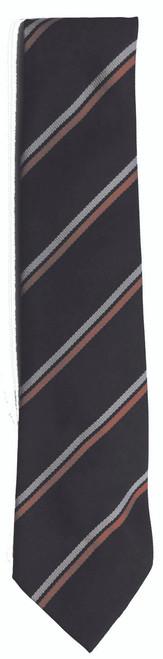 St Davids School Tie