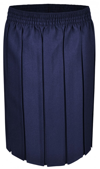 Navy Box Pleat Skirt