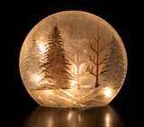 Winter Wonderland Decorative Light