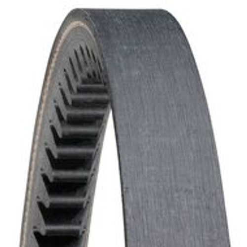 DX128 Gold Ribbon Cog-Belt
