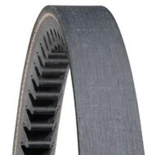 DX158 Gold Ribbon Cog-Belt