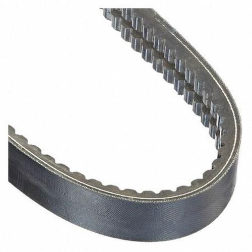 RBX100-2 Gold Ribbon Cog-Band Belt
