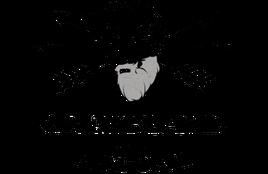 Greybeard_Actual