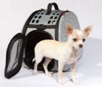 Pet Carrier - Transporter