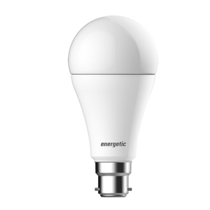 Energetic A67 B22 13W (1055lm) Dimmable Bulb Warm White
