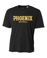 Phoenix Practice Dri-Fit Black