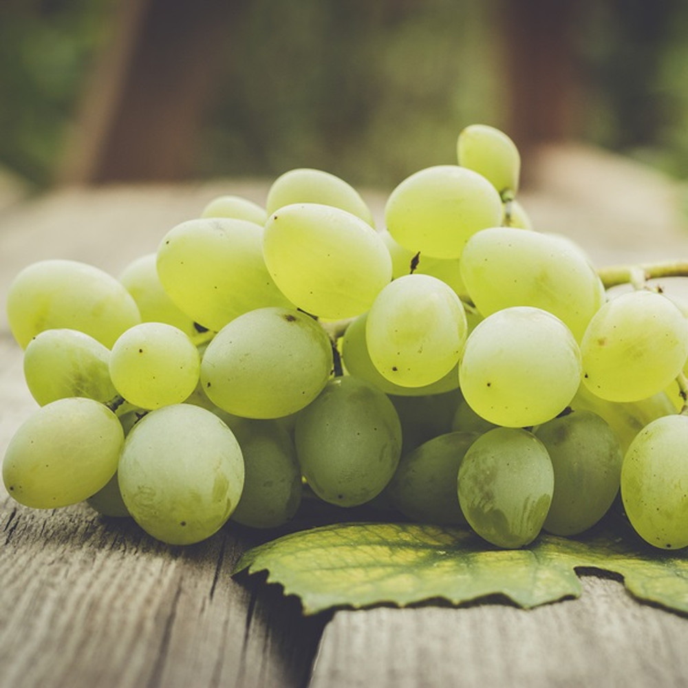 Grape Seed Oil-Refined