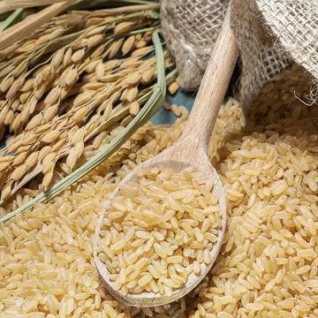 Rice Bran Oil - Refined