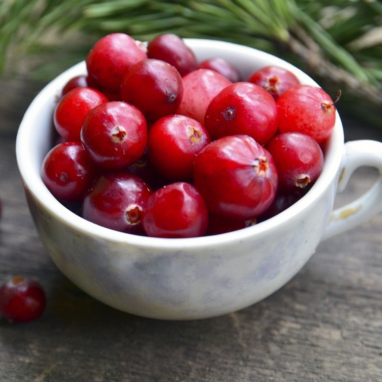 Cranberry Oil - Virgin