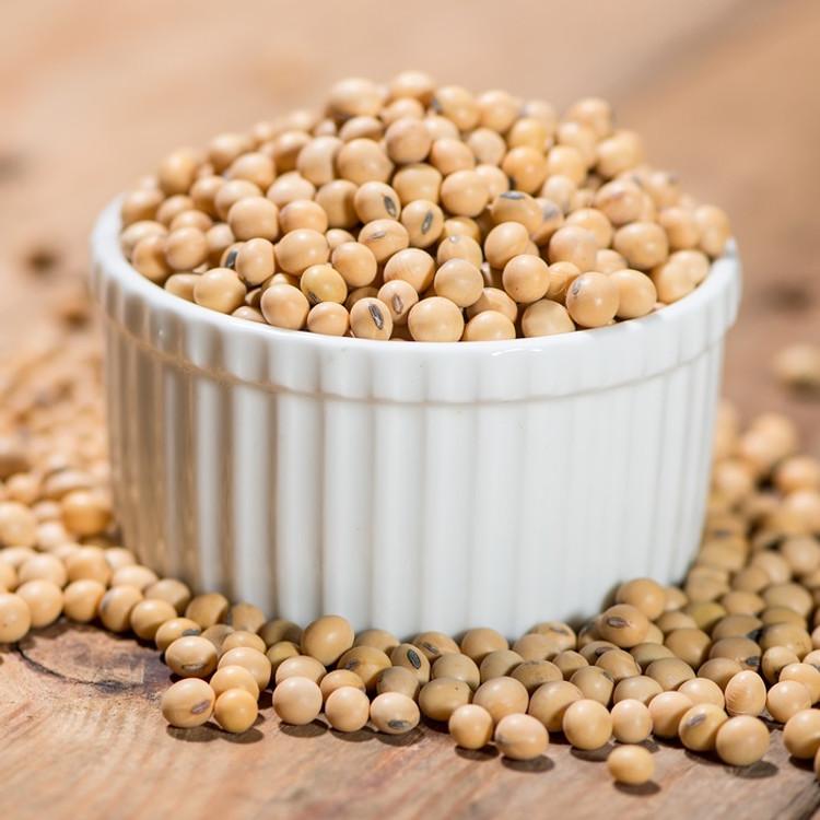 Soyabean Oil - Refined