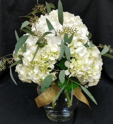 White Hydrangea and eucalyptus with a sheer ribbon of your color choice