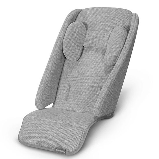 UPPAbaby 2020 Infant SnugSeat