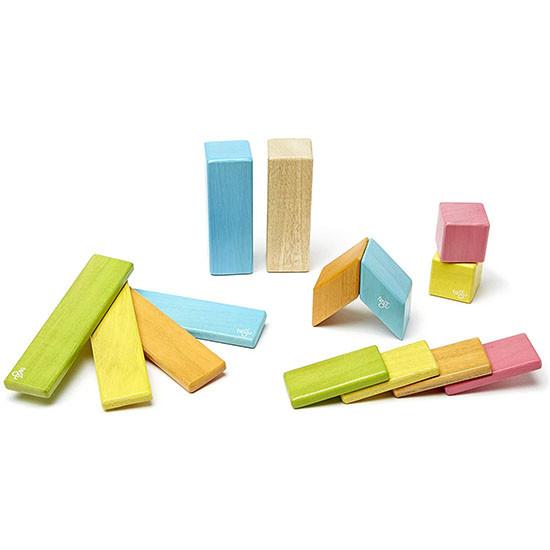 Tegu 14 Piece Magnetic Wooden Block Set - Tints