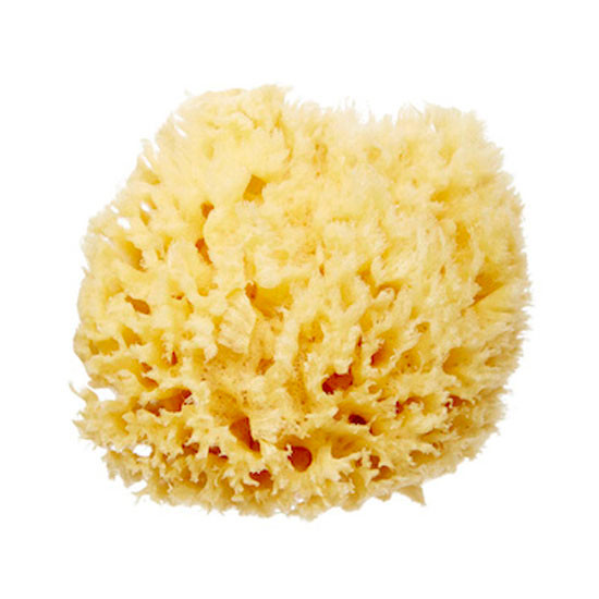 Baby Buddy Natural Bath Sponge