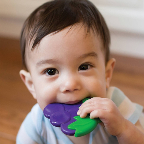 Dr. Brown Coolees Soothing Teether - Grape-2