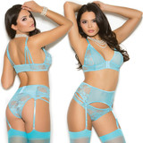 Mesh w Lace Detail Bra, Garter Belt and Panty - Front and Back