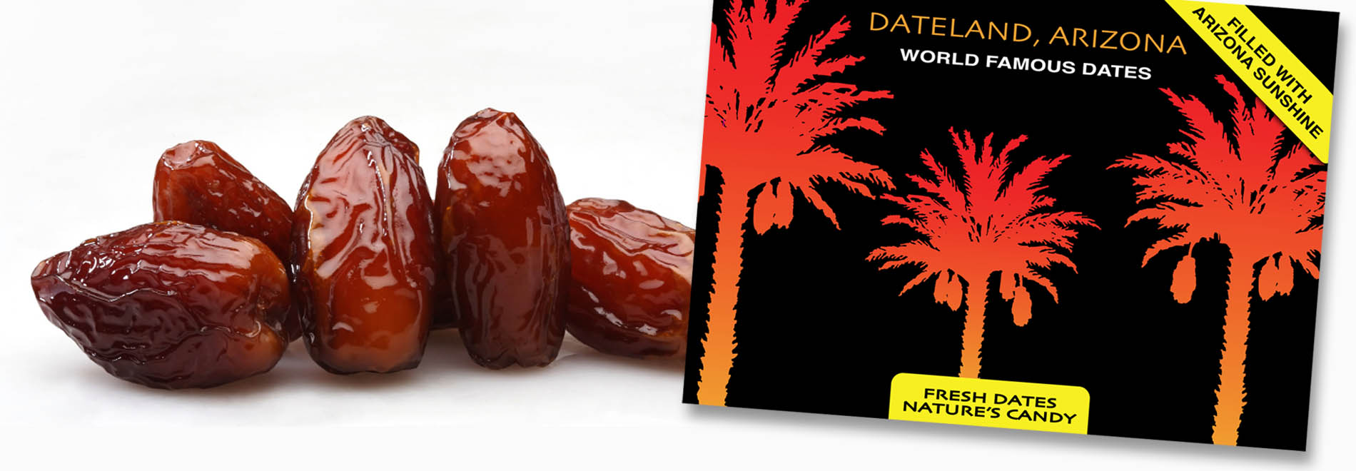 Delicious Boxed Dates Direct from the Grower